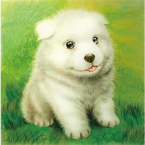 我的手绘生活--色铅笔之萌宠爱犬