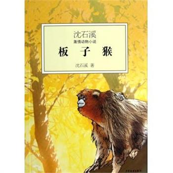 板子猴/沈石溪激情动物小说