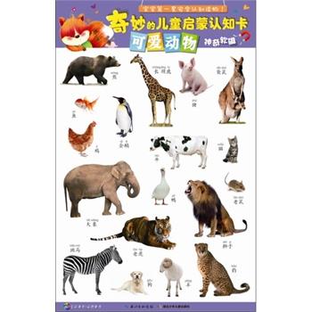 奇妙的儿童启蒙认知卡-可爱动物(国内首套宝宝安全认知读物,挂图卡片