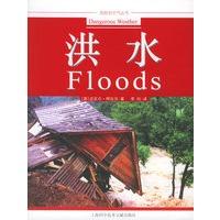 《洪水――危险的天气丛书》封面
