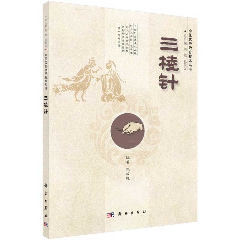 《三棱针》(武峻艳.)【简介