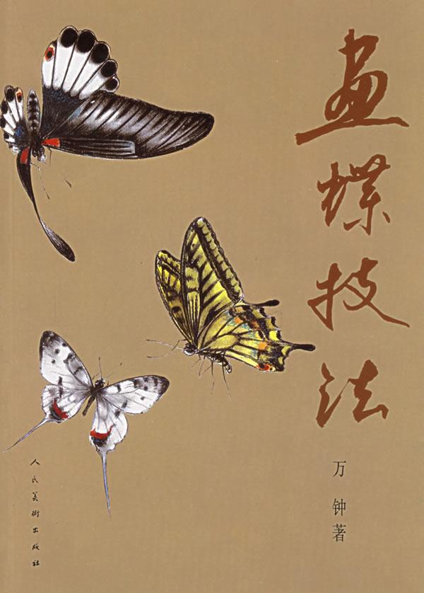 白描精美蝴蝶设计图片