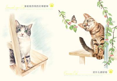 可爱小猫的素描画; 色铅笔下的猫咪天国;