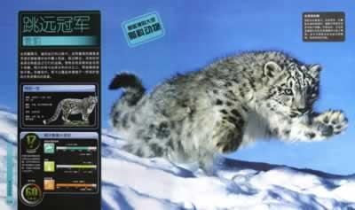 《dk儿童极限百科全书-动物极限》