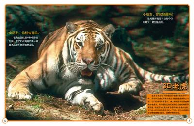 在书中有虎视眈眈的大老虎,有神奇盎然的美洲豹,也有小巧可人的小山猫
