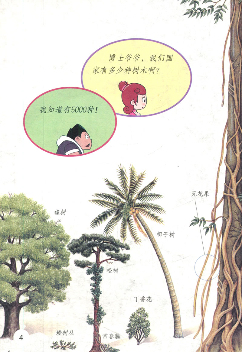 树木的森林之歌\/刘童,解华(插图作者):图书比价
