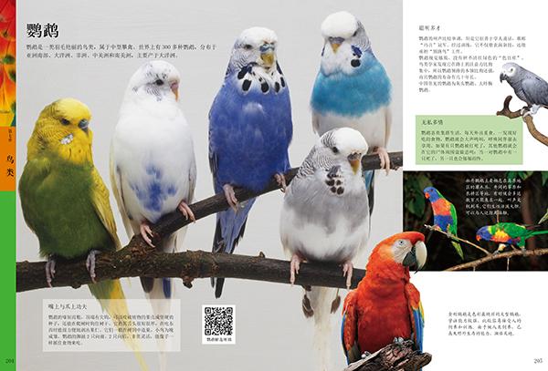 fun书 中国儿童ag游戏直营网|平台百科(精装)  作者简介   《中国儿童ag游戏直营网|平台百科》