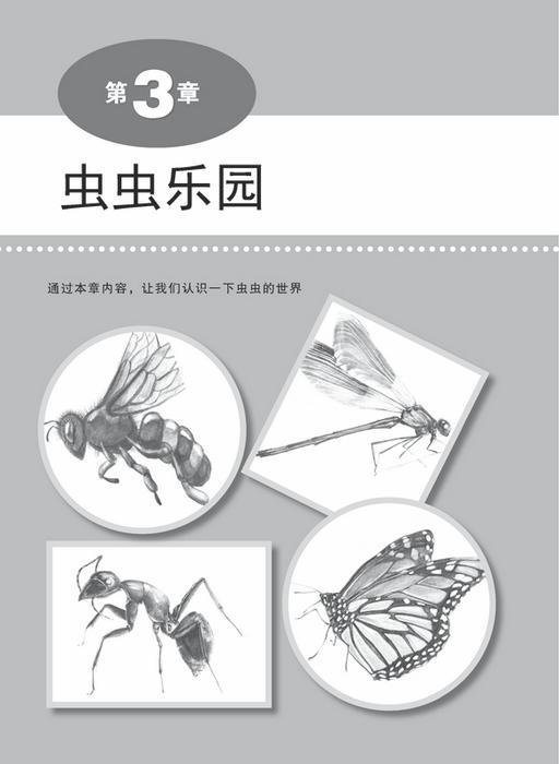 铅笔素描绘制详解——动物技法篇