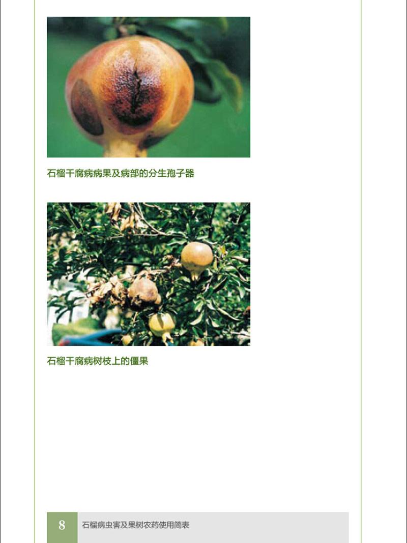果树病虫害防治丛书--石榴病虫害防治及果树农药使用