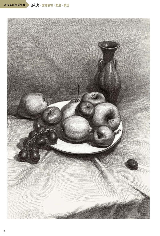【rt3】美术基础快速突破--解决素描静物-塑造表现 辛乐 湖北美术出版