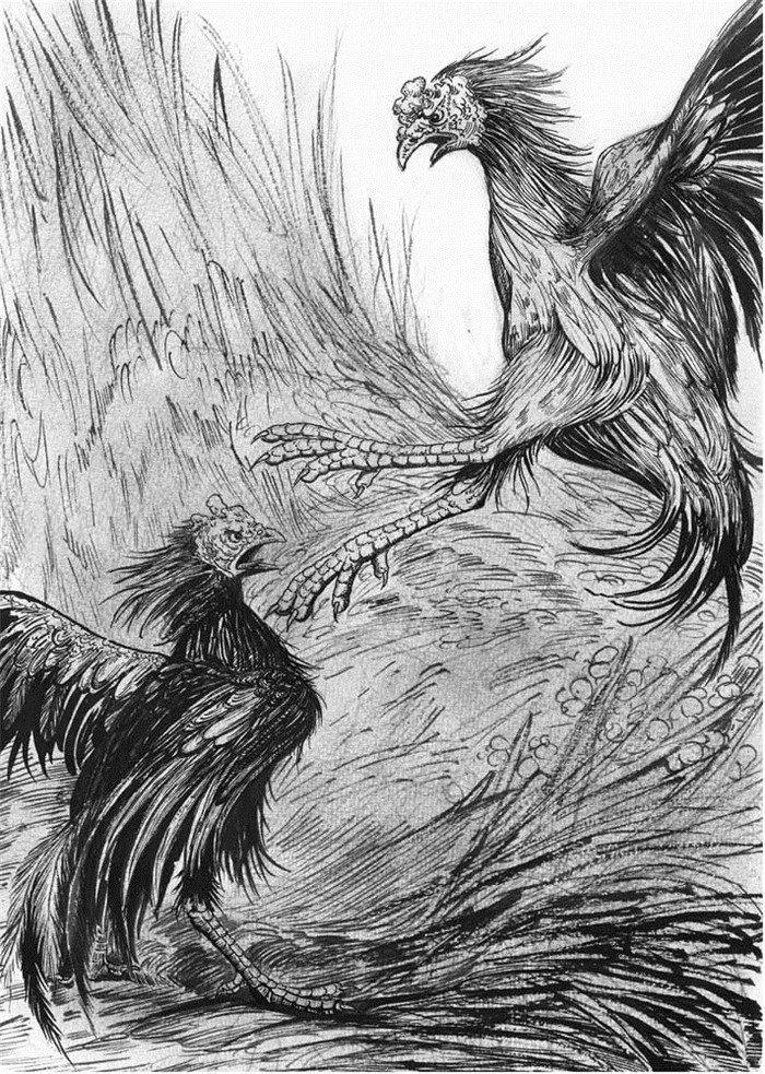 《狼王梦狼王洛波》 在一场大暴雨中,母狼紫岚在极端危险的情况下、在极端疲劳、极端脆弱的身体状态下,与凶残的猎狗斗智斗勇,艰难产下五只狼崽。在接下来的岁月里,紫岚费尽心机,历尽屈辱,忍饥挨饿,牺牲爱情,一心只为把自己的后代培养成狼王。谁知命途多舛的它总与幸运擦肩而过,从一只风华绝代、备受公狼爱慕的母狼沦落为又丑又老、孤苦无依的瘸腿母狼。更让它痛苦的是,它一次次地遭受丧子之痛,一次次地承受梦想幻灭之悲。在天妒英才的愤恨中,在失望与希望的轮回中,紫岚品味着现实,坚守着梦想 狼王洛波率领狼群在格伦堡地区肆虐