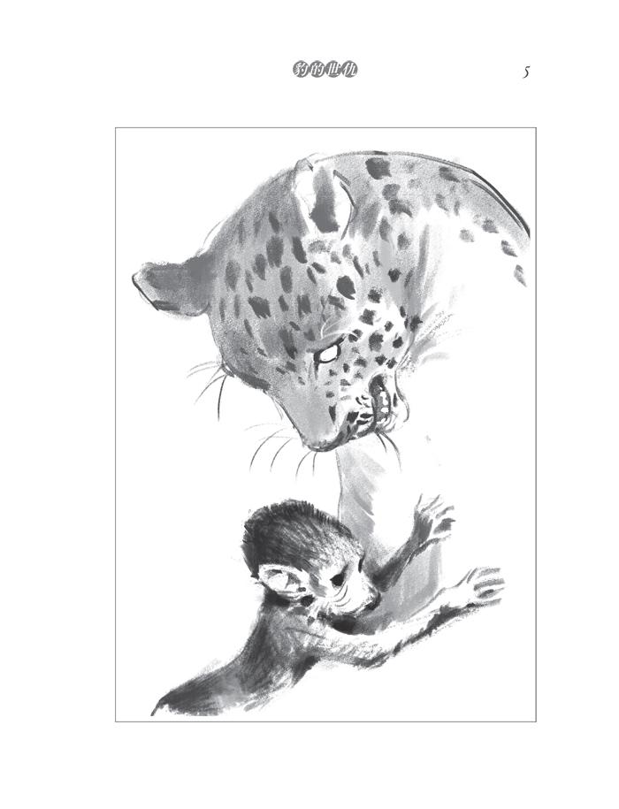 动物小说王子袁博非洲系列-豹的世仇/袁博:图书比价:琅琅比价网