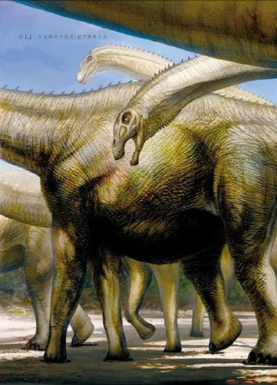 【th】恐龙足迹——追寻亿万年前的神秘印记 邢立达 上海科技教育出版