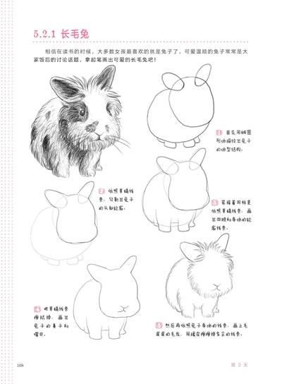 三天学会铅笔画(快乐,简单,效地教会你绘画的技巧.)