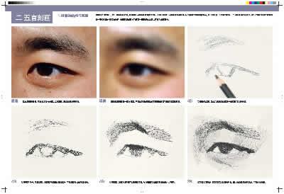 教学视界:刘斌素描头像临摹