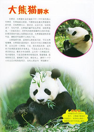 3d动物世界:野生动物(附3d立体特殊眼镜)