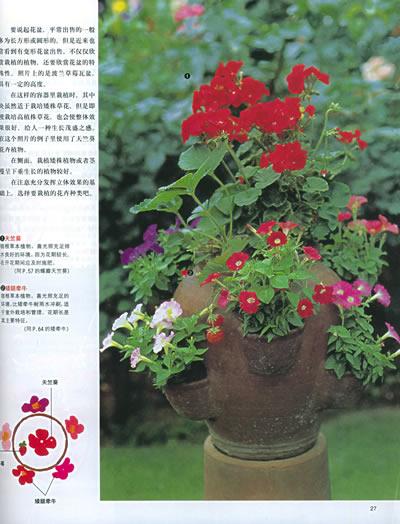 阳台花卉园艺图片