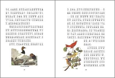 森林报·彩色注音版(春,夏,秋,冬全四册)详细介绍