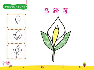 《我爱简笔画·花草树木(三步式简笔画