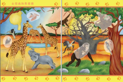 奇妙的动物世界 非洲草原图片