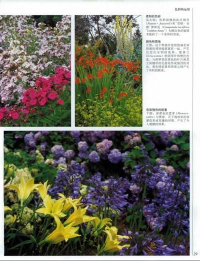 dk 世界园林植物与花卉百科全书(最新版)(英国皇家园艺学会推