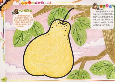 小手画出大世界·水果蔬菜